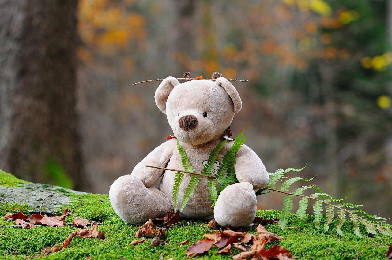 teddy bear mindfulness