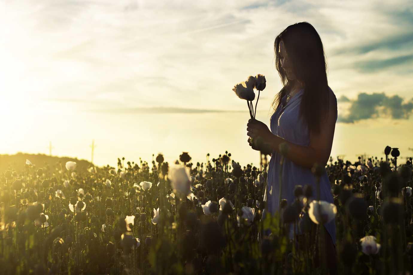 Flowers Mindfulness